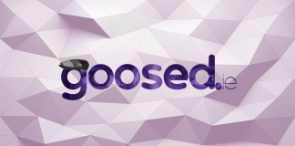 goos3d becomes goosed